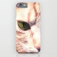 GINGER CAT iPhone 6s Slim Case