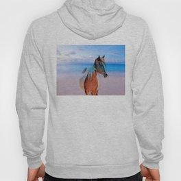 Horse On The Beach By Annie Zeno  Hoody