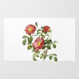 Vintage Red Roses [06] Rug