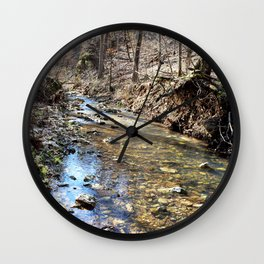 Alone in Secret Hollow with the Caves, Cascades, and Critters, No. 10 of 20 Wall Clock