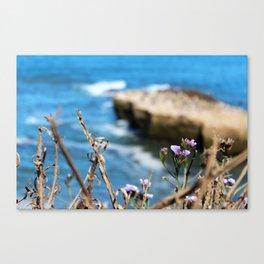 Cliff View Canvas Print