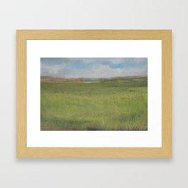 Myakka Prairie Framed Art Print