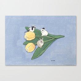 Tulip and bunnies Canvas Print