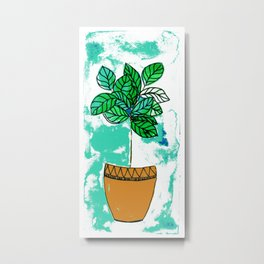 Indoor plant in pot Metal Print