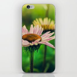 Daisy VI iPhone Skin