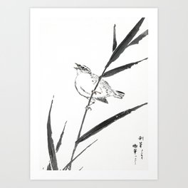 Antique Japanese Woodblock Print Art By Numata Kashu - Bunting Bird Sitting On Reed Art Print