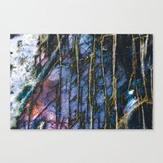 Snowy Forest Night Canvas Print