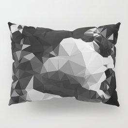 RENAISSANCE 2.0 Pillow Sham