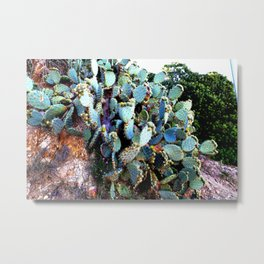 Invasion of colorful Cactus green blue red Metal Print