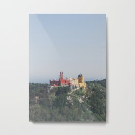 Pena From Above Metal Print
