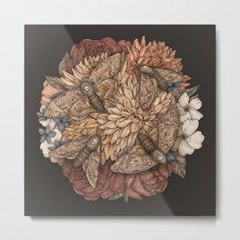 Flowers and Moths Metal Print
