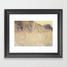 Hazy Days of Summer Framed Art Print
