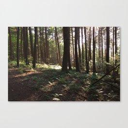 Stevens Glen I Canvas Print