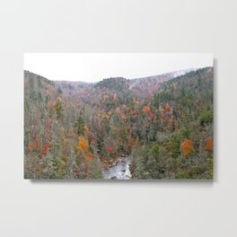 Fall Forest, Horizontal Metal Print