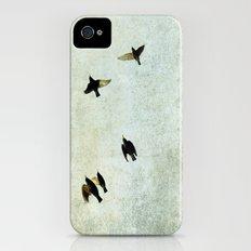 Birds Let's fly Slim Case iPhone (4, 4s)