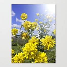 POWER FLOWER Canvas Print