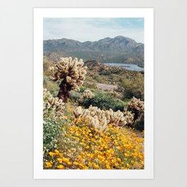 Arizona Mountain Poppies Art Print