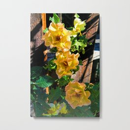 Rosy Sunrise Metal Print