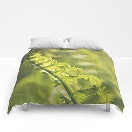 AFE Fern Comforters