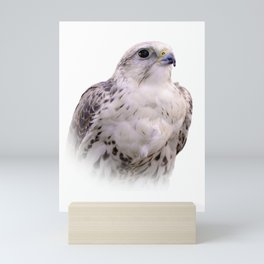 Up Close and Personal with a Stunning Saker Falcon Mini Art Print