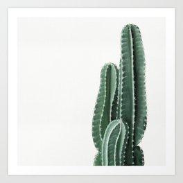 Cactus Wall Art Print. Botanical Art Print. Art Print