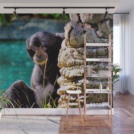 Sweet Howler Monkey Wall Mural