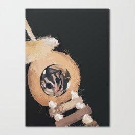 Nocturnal Friend Canvas Print