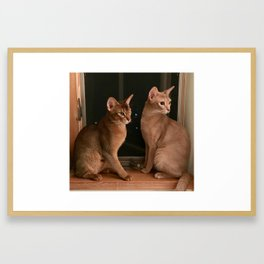 Chaco and Kuma Framed Art Print