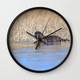 Watercolor Otter 14, Janes Island, Maryland Wall Clock