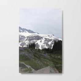 Washington Summer Metal Print