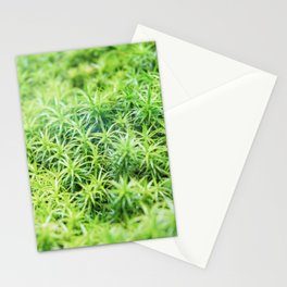 Forest of moss Stationery Cards