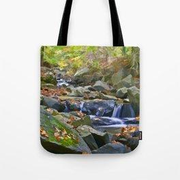 Brandywine Springs Tote Bag