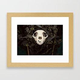Skull and Bone Framed Art Print