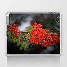 Rote Beeren Laptop & iPad Skin