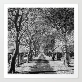 Cemetery path. Art Print