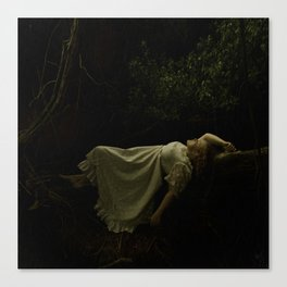 A quiet place Canvas Print