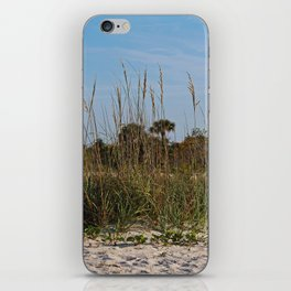The Price is Sweet iPhone Skin
