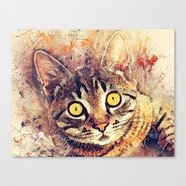 Cat Tigger Canvas Print