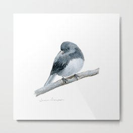 The Bashful Black-Eyed Junco by Teresa Thompson Metal Print