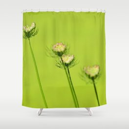 Chartreuse Queen Anne's Lace Shower Curtain