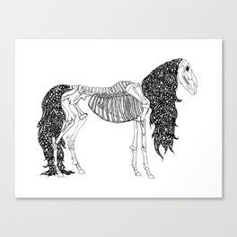 Death's Stallion Canvas Print