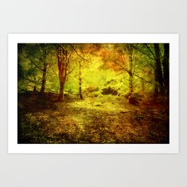 The light in the forest Art Print