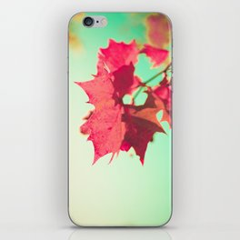 Red Maple Leafs iPhone Skin
