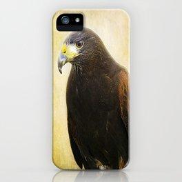 A Harris Hawk iPhone Case