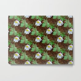 Diagonal rows of nodding flowers Metal Print