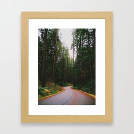 Lynn Canyon Park, Vancouver BC Framed Art Print