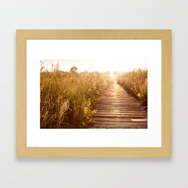 boardwalk and morass grass Framed Art Print