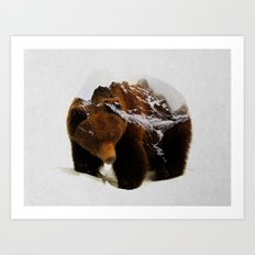 Bear In The Mountains Art Print