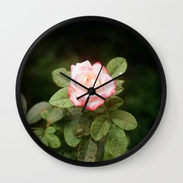 Flower Photography by Vo Danh Wall Clock