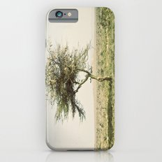 twist::kenya iPhone 6s Slim Case